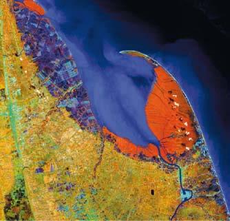 ภาพแสดงภาพถ่ายจากดาวเทียม LANDSAT 5 TM แบนด์ 4-5-3 (แดง-เขียว-น้ำเงิน) บันทึกภาพวันที่ 9 พฤษภาคม 2542 แสดงพื้นที่ป่าชายเลนบริเวณอ่าวปากพนัง จังหวัดนครศรีธรรมราช