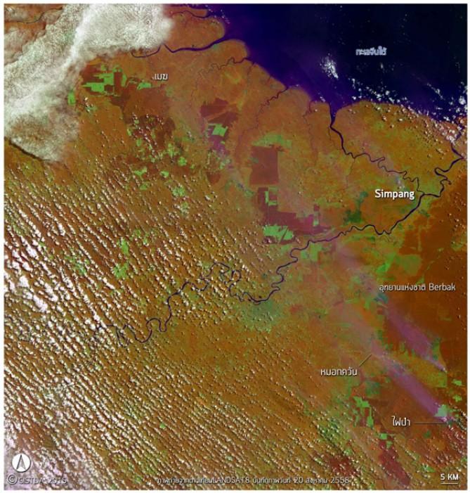 ภาพถ่ายจากดาวเทียม Landsat-8 บันทึกภาพวันที่ 20 สิงหาคม 2558 บริเวณเกาะสุมาตรา แสดงให้เห็นถึงกลุ่มไฟเริ่มก่อตัวบริเวณป่า