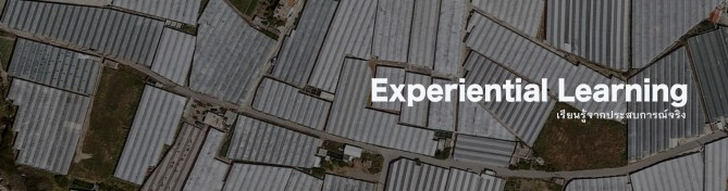 Experiential banner